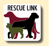 Rescue Link